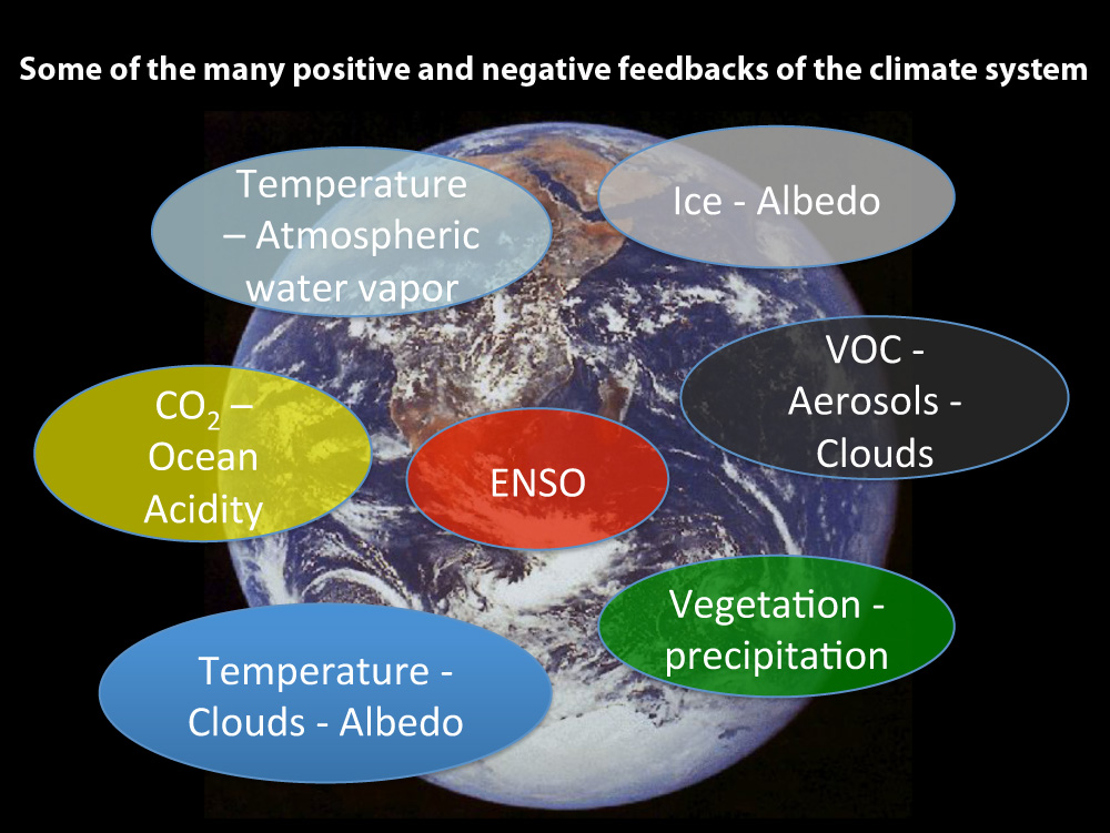 Some Feedback Mechanisms in the Climate System